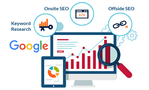 Seo Service Provider
